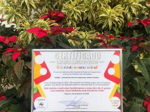 Read more about the article Empresa CTESS – CONSULTORIA TÉCNICA EM SEGURANÇA SAÚDE NO TRABALHO  recebe o Certificado Empresa Amiga do Idoso 2020